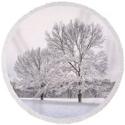 Raising With The Winterfrost Round Beach Towel