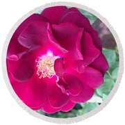 Rambling Rose Round Beach Towel