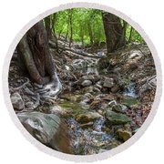 Ramsey Canyon Preserve Round Beach Towel