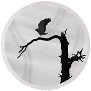 Raptor Silhouette Round Beach Towel by Joe Bonita
