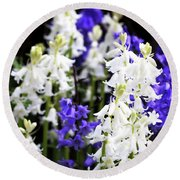 Round Beach Towel featuring the photograph Rare Bluebell Mix by Baggieoldboy