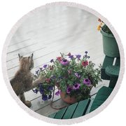 Swat The Petunias Round Beach Towel