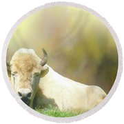 Round Beach Towel featuring the photograph Rare White Buffalo by Janette Boyd