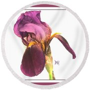 Raspberry Iris Round Beach Towel by Marsha Heiken