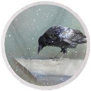 Raven In Winter Round Beach Towel