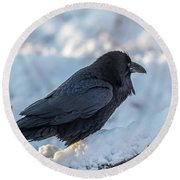 Round Beach Towel featuring the photograph Raven by Paul Freidlund