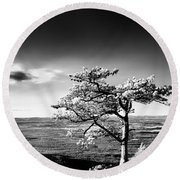 Ravens Roost Ir Tree Round Beach Towel