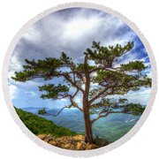 Ravens Roost Tree Round Beach Towel by Greg Reed