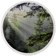 Rays Through An Oregon Rain Forest Round Beach Towel