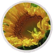 Reach For The Sky Sunflower - Floral Art From The Garden - Floral Macro Round Beach Towel