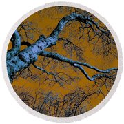 Reaching For The Skies Round Beach Towel