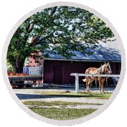 Round Beach Towel featuring the photograph Ready And Waiting by Cricket Hackmann