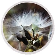 Ready To Fly... Salsify Seeds Round Beach Towel