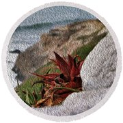 Red Aloe Vera By The Sea Round Beach Towel