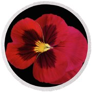 Red And Black Pansy Round Beach Towel