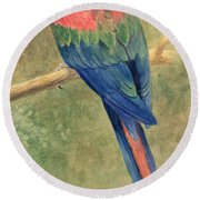 Red And Blue Macaw Round Beach Towel by Henry Stacey Marks