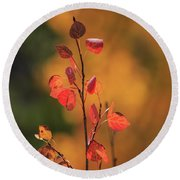 Red And Gold Round Beach Towel