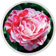 Red And Pink Floral Candy Rose Garden 490 Round Beach Towel