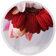 Red And Pink Gerberas And Tulips Round Beach Towel