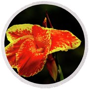 Red And Yellow Single Flower Round Beach Towel