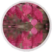 Red Autumn Leaf Reflections Round Beach Towel by Judy Palkimas