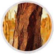 Round Beach Towel featuring the photograph Red Bark by Douglas Barnard