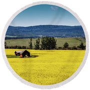 Red Barns In A Sea Of Canola Round Beach Towel