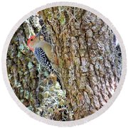 Round Beach Towel featuring the photograph Red-bellied Woodpecker By Bill Holkham by Bill Holkham