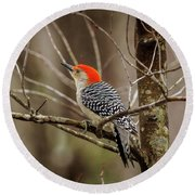 Red Bellied Woodpecker Round Beach Towel