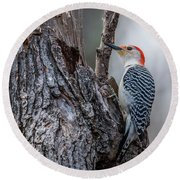 Round Beach Towel featuring the photograph Red Bellied Woody by Paul Freidlund