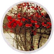 Red Berries In Winter Round Beach Towel by Susan Lafleur