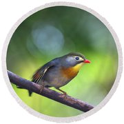 Red Billed Leiothrix Round Beach Towel