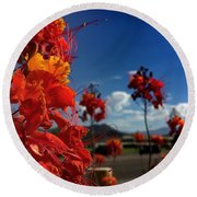 Red Bird Of Paradise Round Beach Towel by Chris Tarpening