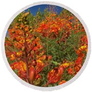 Red Bird Of Paradise Garden Round Beach Towel by Chris Tarpening