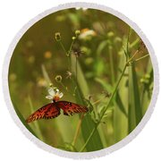 Red Butterfly In Daisy Field Round Beach Towel