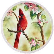 Red Cardinal And Blossoms Round Beach Towel