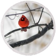 Round Beach Towel featuring the photograph Red Cardinal In Snow by Marie Hicks
