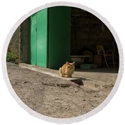 Red Cat And Green Shed Round Beach Towel