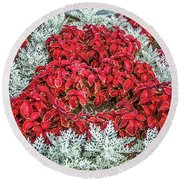 Round Beach Towel featuring the photograph Red Coleus And Dusty Miller Plants by Sue Smith