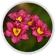 Round Beach Towel featuring the photograph Red Columbine Hybrid by John Haldane