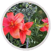 Red Day Lilies Round Beach Towel