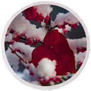 Red Fall Leaf On Snowy Red Berries Round Beach Towel