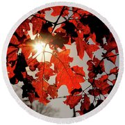 Red Fall Leaves Round Beach Towel