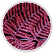 Red Fern Round Beach Towel