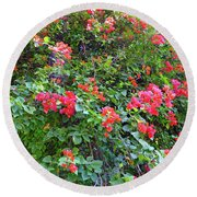 Round Beach Towel featuring the photograph Red Flower Hedge by Francesca Mackenney