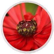 Red Flower Round Beach Towel