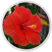 Round Beach Towel featuring the photograph Red Flower by Rob Hans