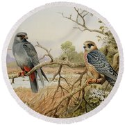 Red-footed Falcons Round Beach Towel by Carl Donner