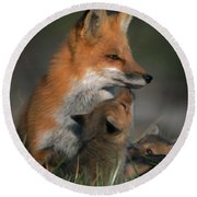 Red Fox Mother And Kits Round Beach Towel
