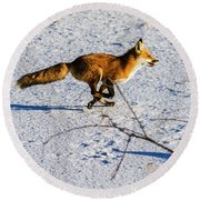 Red Fox On The Run Round Beach Towel